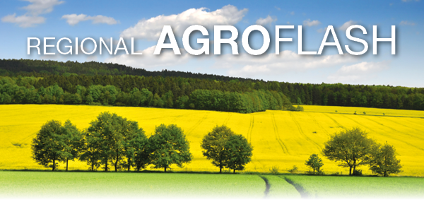 RO banner regional agroflash.png
